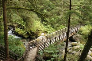 Bridge on Wallace Falls trail