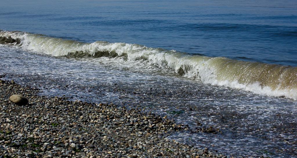 Seahurst Park Waves