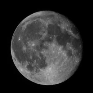 Newport moon